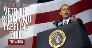 Obama_Flag_Sham_Bill_Veto_600